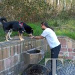 Was ein Service! Herrchen hilft beim Wassertrinken!